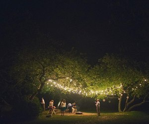 dreams, trees, and lights image
