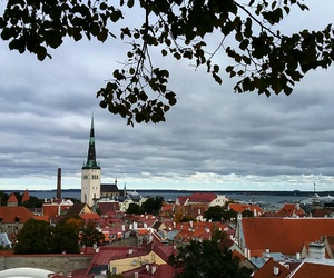 autumn, city, and estonia image