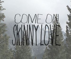 skinny love, love, and quote image