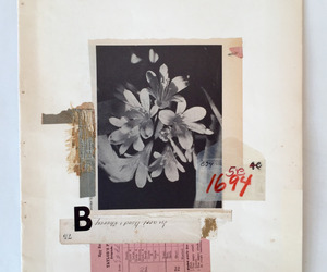 art, Collage, and flowers image