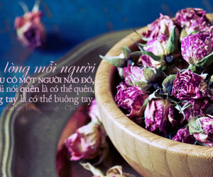 design, flowers, and photoquote image