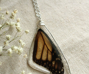 etsy, gift, and monarch butterfly image