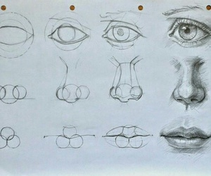 drawing, nose, and art image
