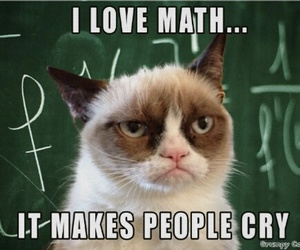 funny, math, and grumpy cat image