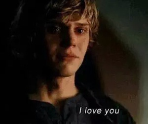 love, american horror story, and evan peters image