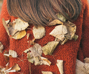 leaves, fall, and girl image