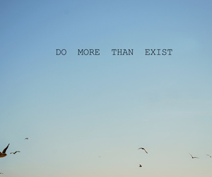 bird, quote, and exist image
