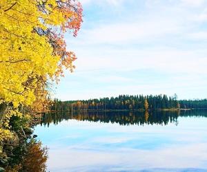 amazing, autumn, and awesome image