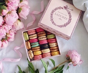 macaroons, food, and flowers image