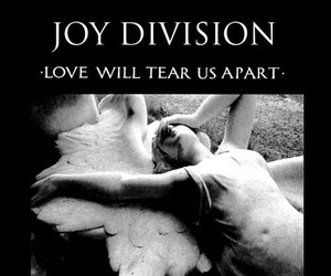 joy division and love will tear us apart image