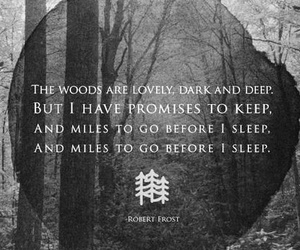 inspirational, inspire, and miles to go before I sleep image