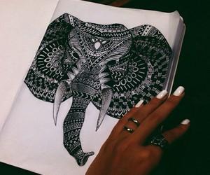 elephant, art, and drawing image