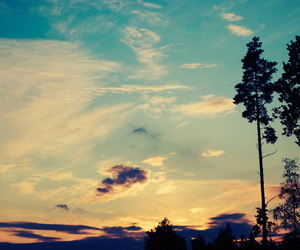 sky, tree, and clouds image