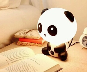 panda, cute, and book image