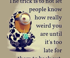 minions, funny, and weird image