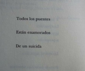 suicidal, book, and frases image