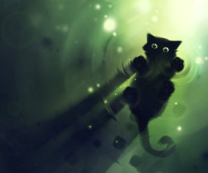 cat, green, and water image