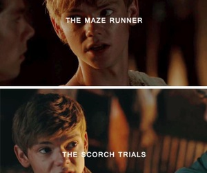 thomas sangster, the maze runner, and the scorch trials image