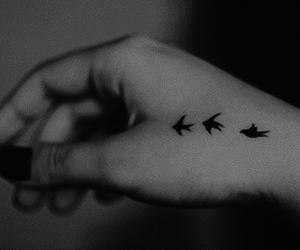 bird, tattoo, and black image