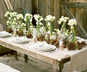 centerpiece, decorations, and flowers image