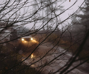 car, autumn, and cold image