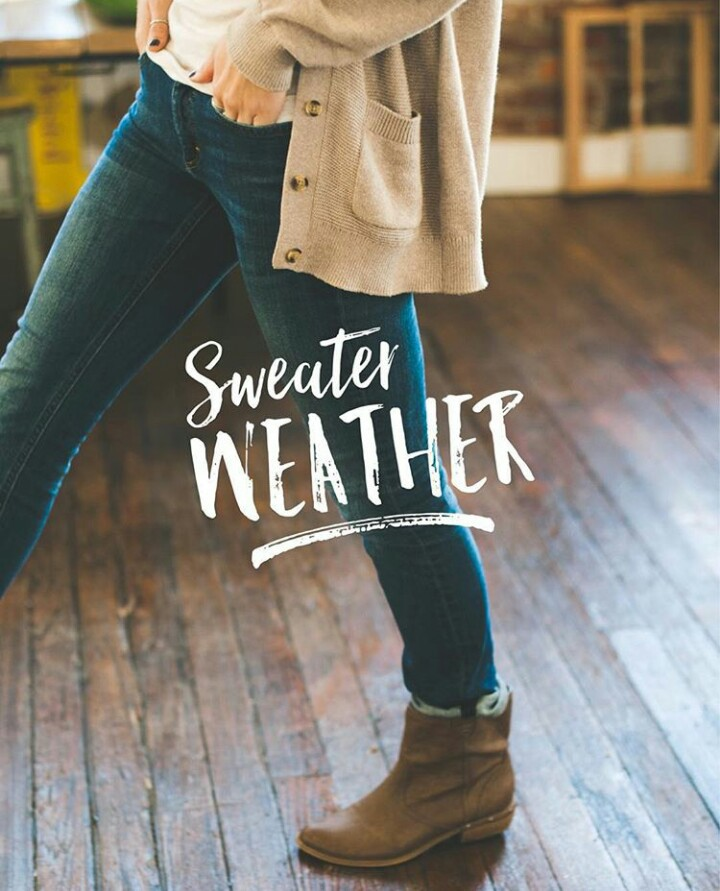 autumn, soft, and sweater weather image
