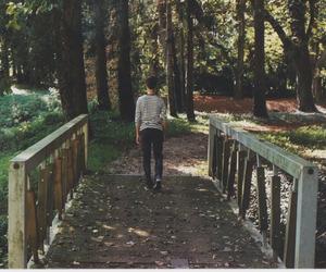 boy, bridge, and fall image
