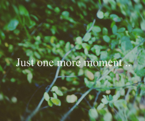 quote, text, and moment image