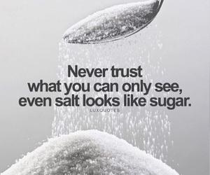 trust, quotes, and salt image