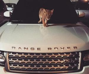 car, range rover, and Dubai image