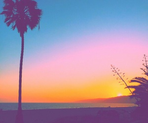 beach, filter, and palm trees image