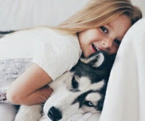 animal, bed, and blonde image