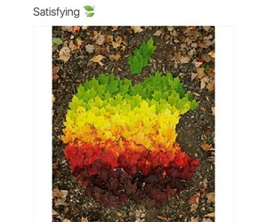 apple, art, and posts image