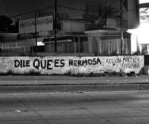 accion poetica, frases, and wall image