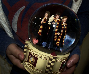 harry potter, hermione granger, and snowball image