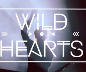r5, wild hearts, and song image