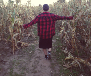 corn, flannel, and hipster image