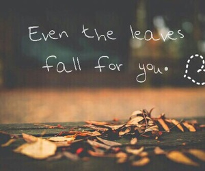 fall, leaves, and quote image