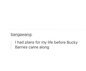 future, plans, and sebastian stan image