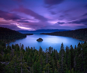 blue, nature, and purple image
