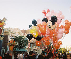 disney and photography image