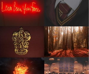 courage, fire, and hogwarts image