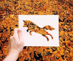 autumn, fox, and art image
