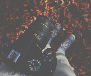 autumn, bright colors, and camera image