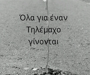 greek, quotes, and ολα image