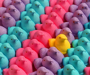 peeps, candy, and colorful image