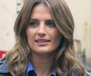 castle, stunning, and stana katic image