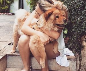 cuteness, tumblr, and dog image