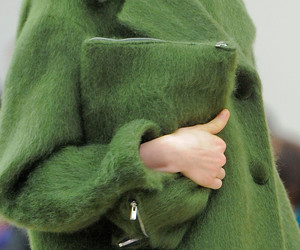 celine, fashion, and green image