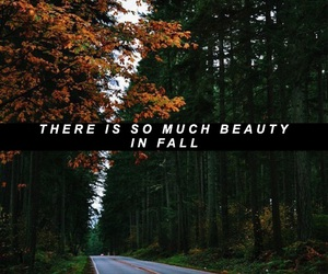 beauty, fall, and fall quotes image
